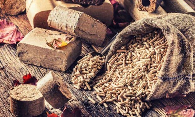 Topte úsporně: Jaké jsou výhody dřevěných briket?