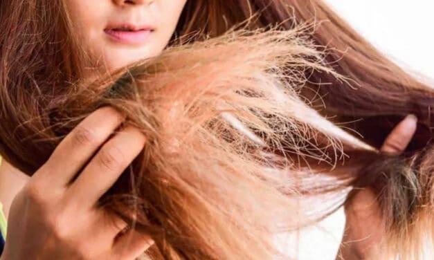 Suché poškozené vlasy: Víte, jak je správně regenerovat?